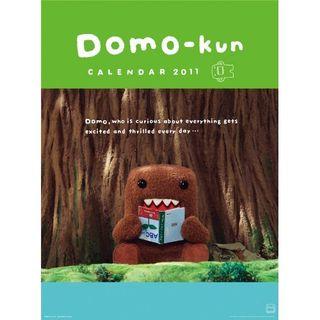 Domo_2011_calendar